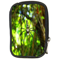 Spider Spiders Web Spider Web Compact Camera Cases