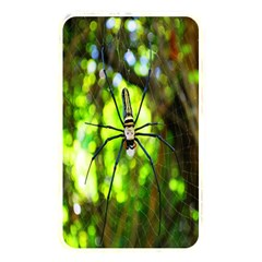 Spider Spiders Web Spider Web Memory Card Reader