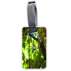 Spider Spiders Web Spider Web Luggage Tags (Two Sides)