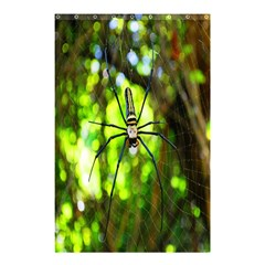 Spider Spiders Web Spider Web Shower Curtain 48  X 72  (small)