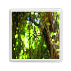 Spider Spiders Web Spider Web Memory Card Reader (Square)
