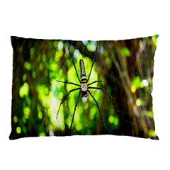 Spider Spiders Web Spider Web Pillow Case (two Sides)