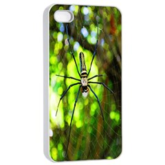 Spider Spiders Web Spider Web Apple Iphone 4/4s Seamless Case (white)