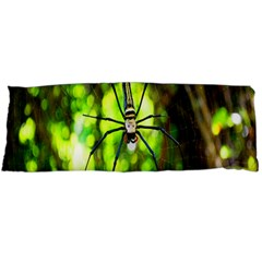 Spider Spiders Web Spider Web Body Pillow Case (dakimakura)