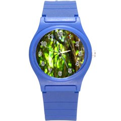 Spider Spiders Web Spider Web Round Plastic Sport Watch (S)
