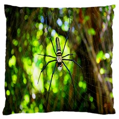 Spider Spiders Web Spider Web Large Cushion Case (two Sides)