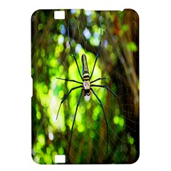 Spider Spiders Web Spider Web Kindle Fire Hd 8 9
