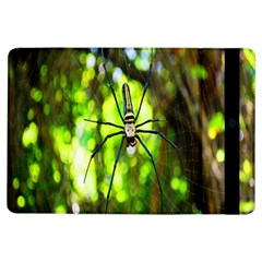 Spider Spiders Web Spider Web Ipad Air Flip