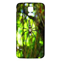 Spider Spiders Web Spider Web Samsung Galaxy S5 Back Case (white)