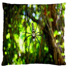 Spider Spiders Web Spider Web Large Flano Cushion Case (Two Sides)