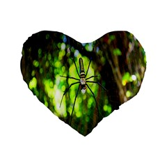 Spider Spiders Web Spider Web Standard 16  Premium Flano Heart Shape Cushions