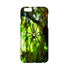 Spider Spiders Web Spider Web Apple iPhone 6/6S Hardshell Case