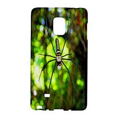 Spider Spiders Web Spider Web Galaxy Note Edge