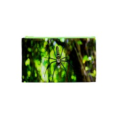 Spider Spiders Web Spider Web Cosmetic Bag (xs)