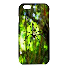 Spider Spiders Web Spider Web iPhone 6/6S TPU Case