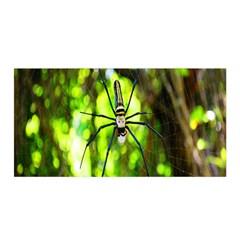 Spider Spiders Web Spider Web Satin Wrap