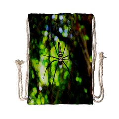 Spider Spiders Web Spider Web Drawstring Bag (Small)