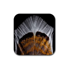 Spring Bird Feather Turkey Feather Rubber Coaster (Square)