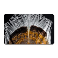 Spring Bird Feather Turkey Feather Magnet (Rectangular)