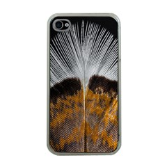 Spring Bird Feather Turkey Feather Apple iPhone 4 Case (Clear)
