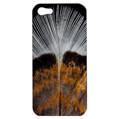 Spring Bird Feather Turkey Feather Apple Iphone 5 Hardshell Case