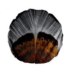 Spring Bird Feather Turkey Feather Standard 15  Premium Round Cushions