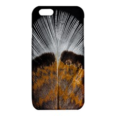 Spring Bird Feather Turkey Feather iPhone 6/6S TPU Case