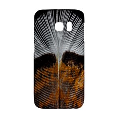 Spring Bird Feather Turkey Feather Galaxy S6 Edge