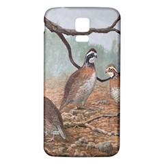 Bob White Quail Samsung Galaxy S5 Back Case (White)