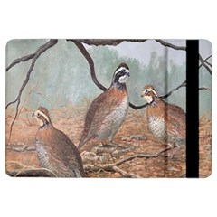 Bob White Quail iPad Air 2 Flip