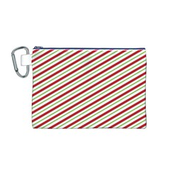Stripes Striped Design Pattern Canvas Cosmetic Bag (m)