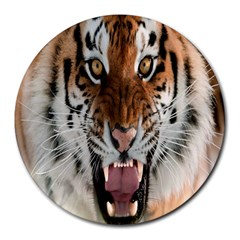 Tiger  Round Mousepads