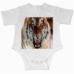 Tiger  Infant Creepers