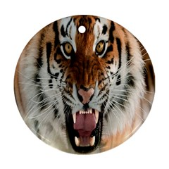Tiger  Round Ornament (two Sides)