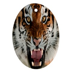 Tiger  Oval Ornament (Two Sides)