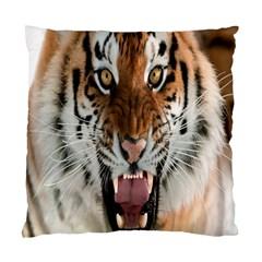 Tiger  Standard Cushion Case (One Side)