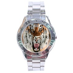 Tiger  Stainless Steel Analogue Watch