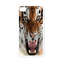 Tiger  Apple iPhone 4 Case (White)