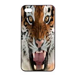 Tiger  Apple iPhone 4/4s Seamless Case (Black)