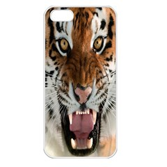 Tiger  Apple Iphone 5 Seamless Case (white)