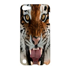 Tiger  Apple Ipod Touch 5 Hardshell Case