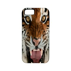 Tiger  Apple Iphone 5 Classic Hardshell Case (pc+silicone)