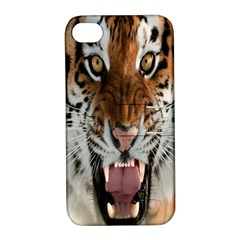 Tiger  Apple Iphone 4/4s Hardshell Case With Stand