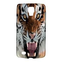 Tiger  Galaxy S4 Active