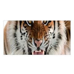 Tiger  Satin Shawl
