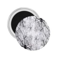 Tree Knots Bark Kaleidoscope 2.25  Magnets