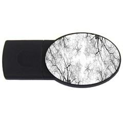 Tree Knots Bark Kaleidoscope Usb Flash Drive Oval (2 Gb)