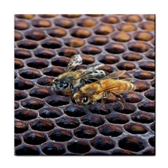 Worker Bees On Honeycomb Tile Coasters