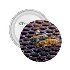 Worker Bees On Honeycomb 2 25  Buttons