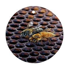Worker Bees On Honeycomb Ornament (Round)